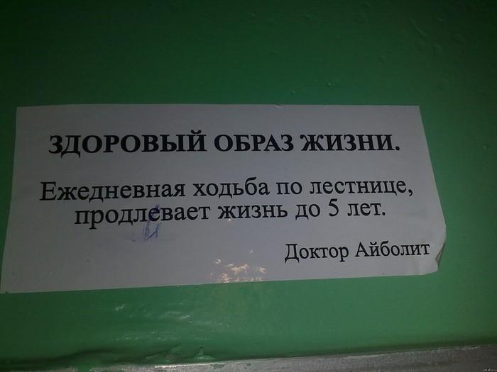 Библия граммар наци. Сложные правила русского языка в наглядной форме