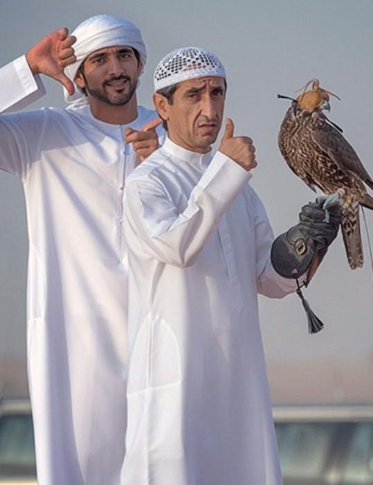 Саудовский принц купил билеты на самолет 80 соколам (видео)