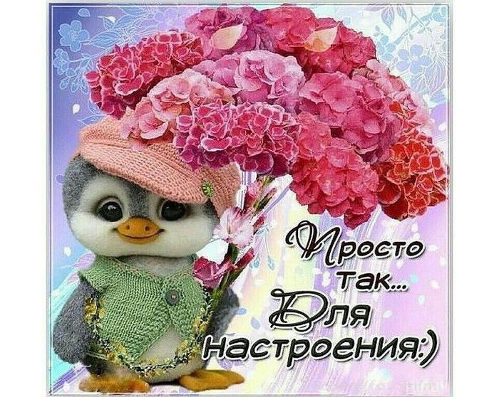 Хорошего настроения цветы