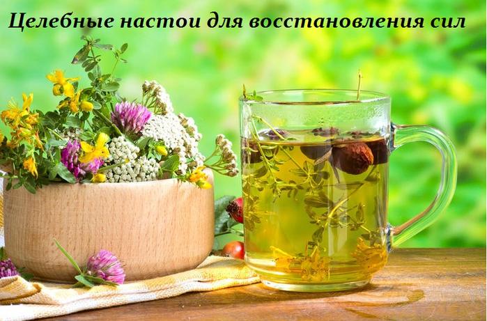 2749438_Celebnie_nastoi_dlya_vosstanovleniya_sil (700x461, 551Kb)
