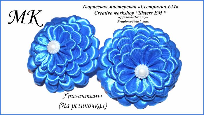синие хризантемы (700x393, 296Kb)