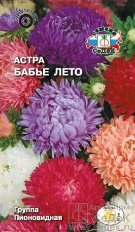 astra_babe_leto (266x458, 174Kb)