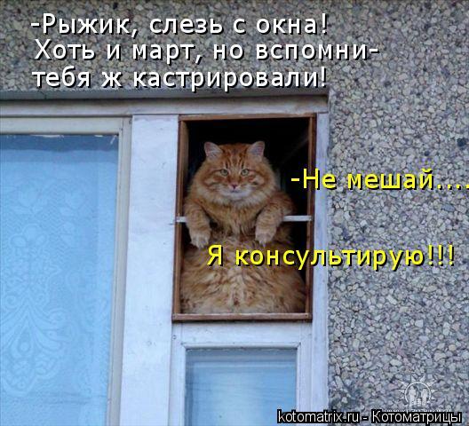 proxy.imgsmail.ru (528x480, 59Kb)