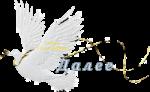 голубь белый (150x92, 17Kb)