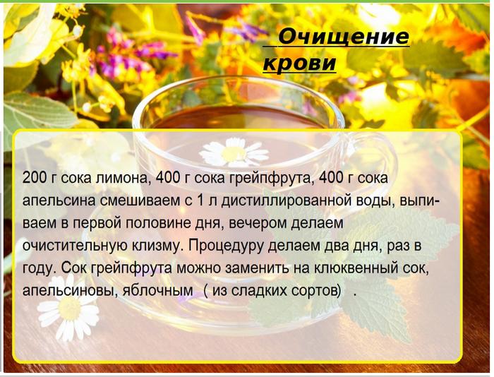 5239983_ochishenie_krovi (700x534, 594Kb)