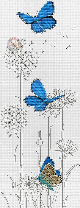 Adonis Blue Butterflies (270x700, 114Kb)