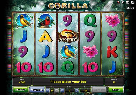 2. горила (562x395, 98Kb)