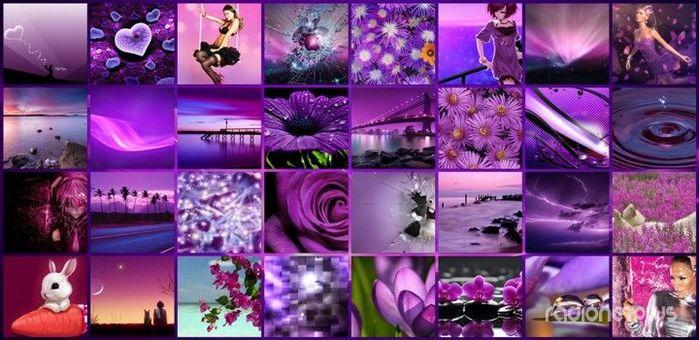 5672049_1359574656_violet (700x340, 65Kb)