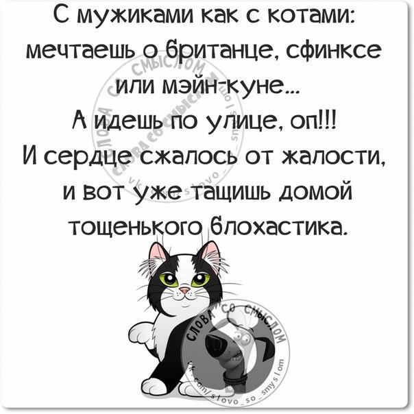 1458850856_frazki-22 (604x604, 184Kb)