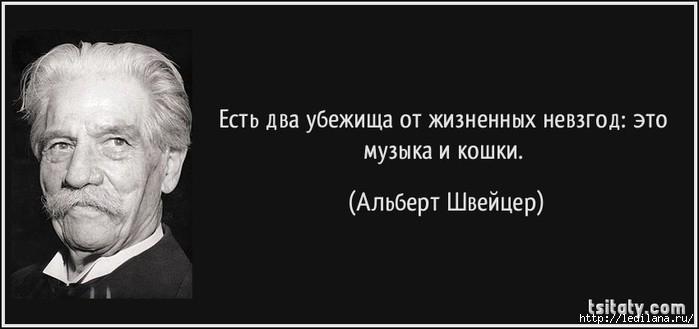 3925311_nevzgodi_1_ (700x329, 67Kb)