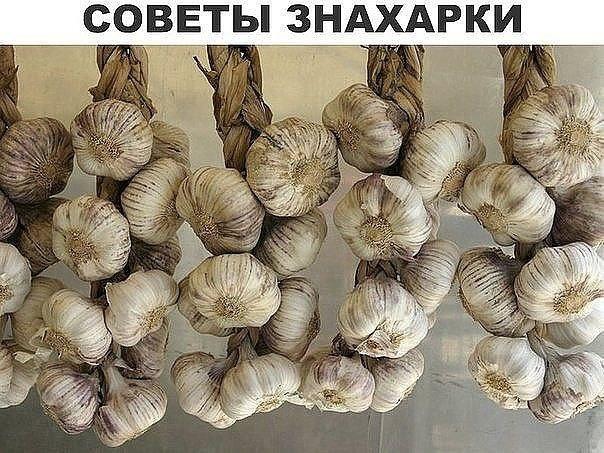 1490464628_10 (604x453, 88Kb)