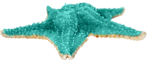Превью Colorful Beach (63) (650x261, 165Kb)