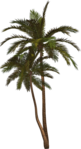Превью Colorful Beach (115) (379x700, 252Kb)