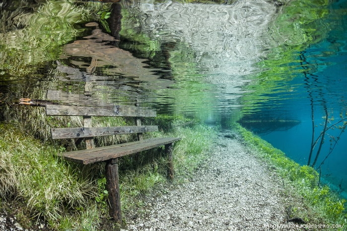 Green-Lake-in-Austria_-submerged-park-funnyrepost.com- (700x466, 332Kb)