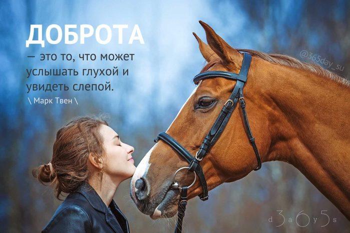5227673_Dobrotaetoto1024x683 (700x466, 58Kb)