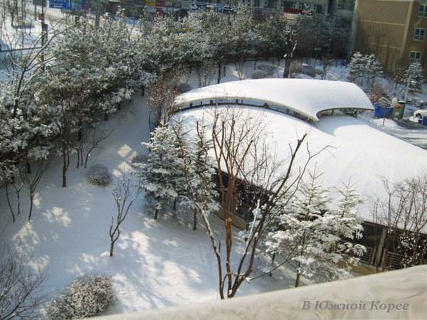 февраль_в_ю.корее (600x450, 282Kb)