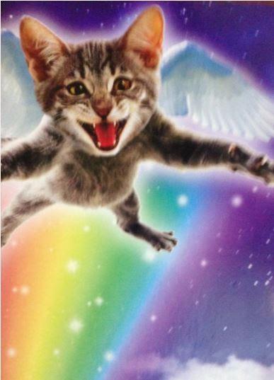 сильный кото ангел (387x537, 159Kb)