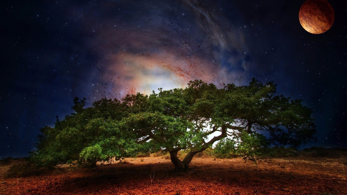 tree-art-planet-light-fantasy-scifi-galaxy-sky-stars-wallpaper-1 (700x393, 305Kb)
