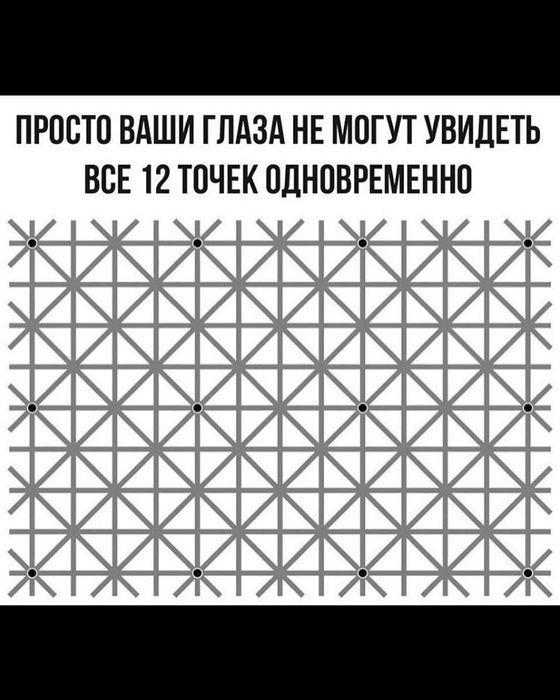 17586868_1149256928554190_7160159327989268480_n (560x700, 61Kb)