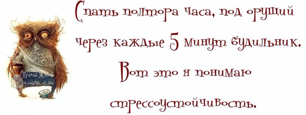 1371065229_frazki-7 (604x227, 115Kb)