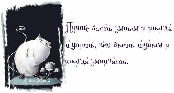 1371065262_frazki-6 (604x324, 104Kb)