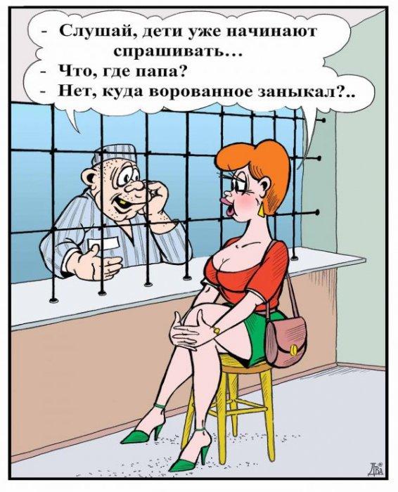3085196_1355203601_radionetplus_ru_k1_38 (566x700, 80Kb)