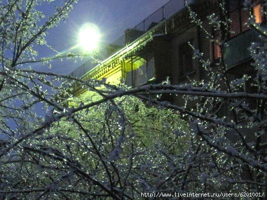 freezing_rain_ice_brilliant (533x400, 230Kb)