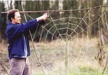 Сплетем гигантскую паутину для сада (2) (346x239, 94Kb)