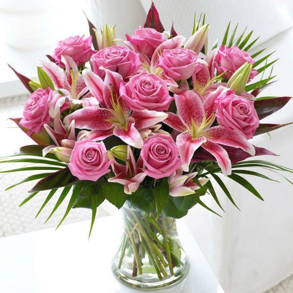 Магазин цветов  купить и заказать цветы рассада саженцы