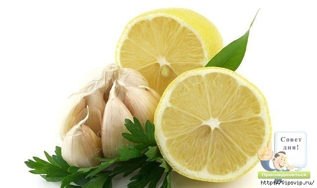 5745884_limon_chesnok (640x380, 84Kb)
