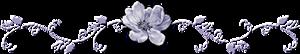134250192_bar (300x54, 20Kb)
