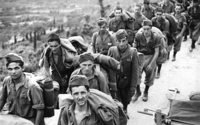 Какие страны Европы воевали против Советского Союза на стороне Германии