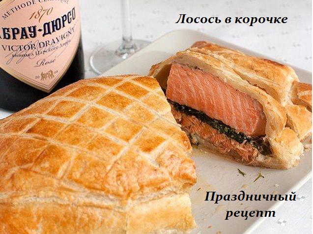 125996915_1446570756_losos__v_korochke (637x476, 548Kb)