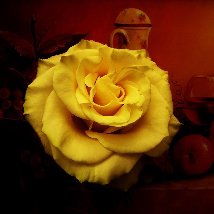 розы от ЛЭ.125168120_020 (697x697, 266Kb)