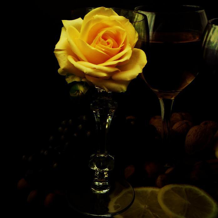 розы от ЛЭ.124057771_016 (697x697, 189Kb)