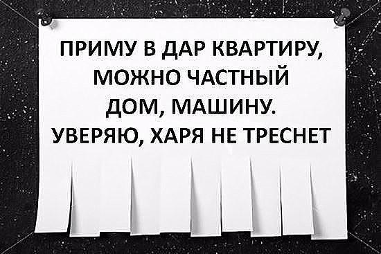 3416556_image_2_ (550x367, 50Kb)