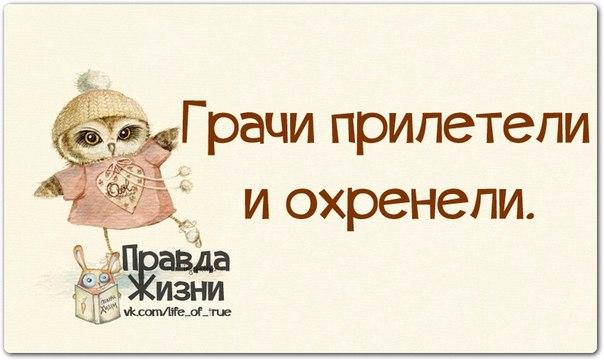 1396466703_frazochki-19 (604x360, 150Kb)