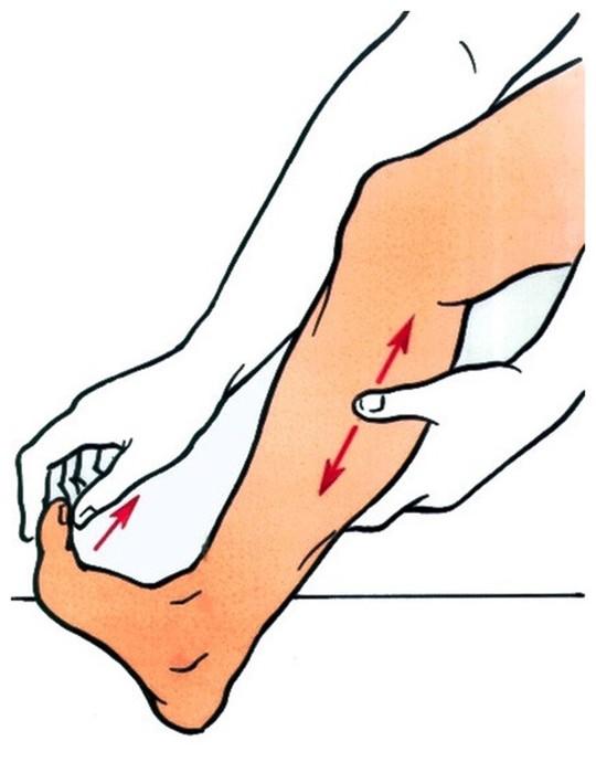 Точечный массаж при судорогах в ногах!