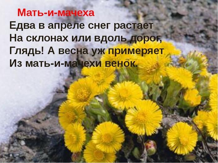 6034576_10_04_ (700x525, 253Kb)