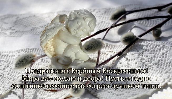 5329627_1397445671_1_ (654x377, 209Kb)