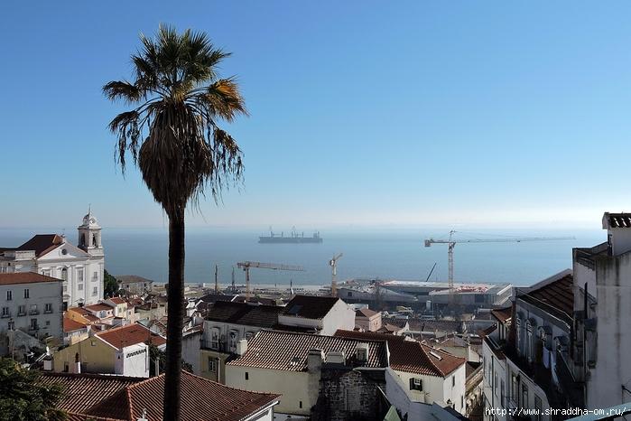 Shraddha_trаvel  Португалия Лиссабон 2017 (168) (700x466, 254Kb)