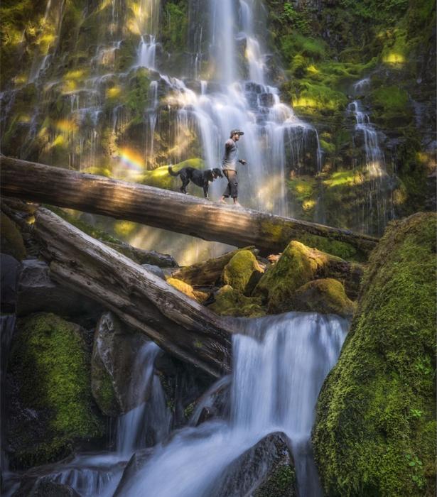 4. Лесной водопад в Орегоне (615x700, 515Kb)