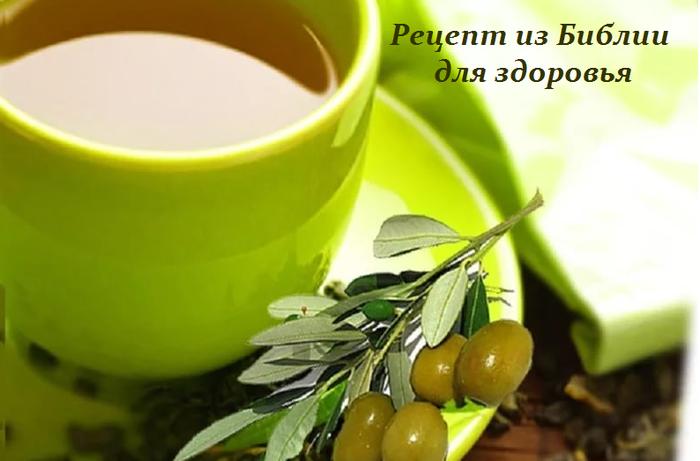 2749438_Recept_iz_Biblii_dlya_zdorovya (700x461, 321Kb)