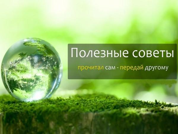 3937459_poleznie_soveti (600x450, 50Kb)