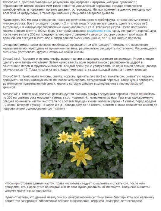 3925311_chistka_limfi (534x700, 488Kb)