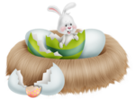 Превью kit_Easter bunny(26)DE (550x404, 231Kb)