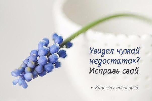 image (22) (604x400, 115Kb)