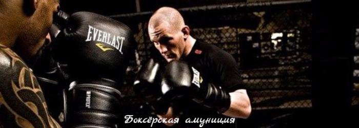 "alt=""Боксёрская амуниция""/2835299_ (700x250, 244Kb)"