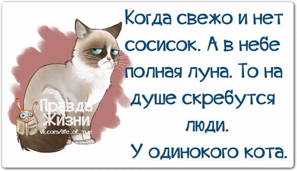 1399864228_frazochki-1 (604x349, 183Kb)