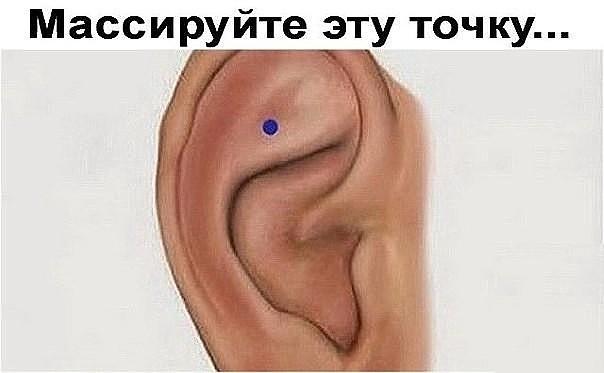 5329627_image_40 (604x373, 36Kb)